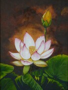 Lotus Flower II